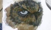 Spook owl...makes me think of DeVillo Sloan!