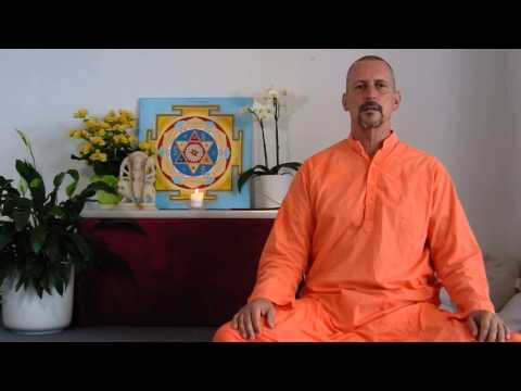 Swami Bodhichitananda on Integrating the Four Paths of Yoga