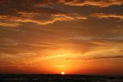 """""""Goldie Sunset"""""""