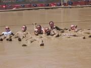 Mud Volleyball 2007