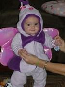Precious Purple Butterfly