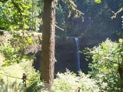 Falls - Slvr Crk Falls