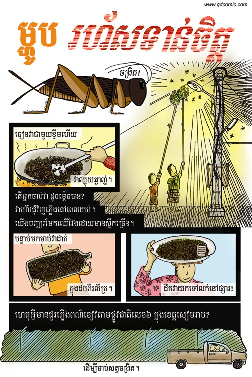 fast-food-khmer-test