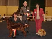 Freya - Best Puppy in Show