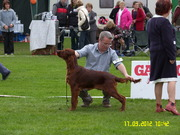 Barney at his first show