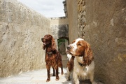 Oliver and I in France