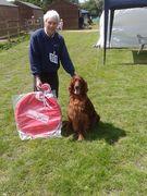 Merlin winning the veteran class at RSPCA MIllbrook 25th May 2014