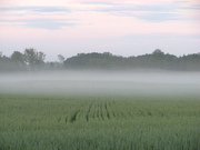 The Mists of Lilla Harrie