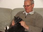Cat in my lap