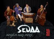 Sedaa-Fly1