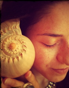 Datura with a shell