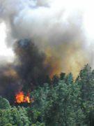 Summit Fire/2008