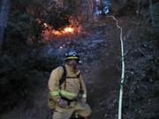 Brad near Fire line