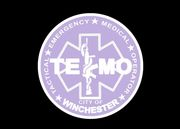 TEMO2