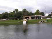 E1_into_pond 1