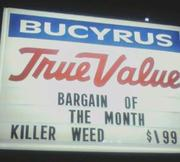 killerweed (sign was mixed up by accident)