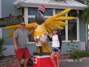 Parrot Head's in Grand Turk, BWI