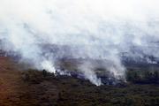tyrrell county nc wildfire