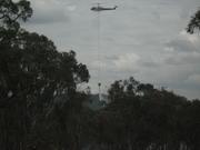 task force armidale nsw 2009 023
