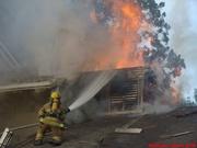 Dallas Fire Rescue Pandora Apt