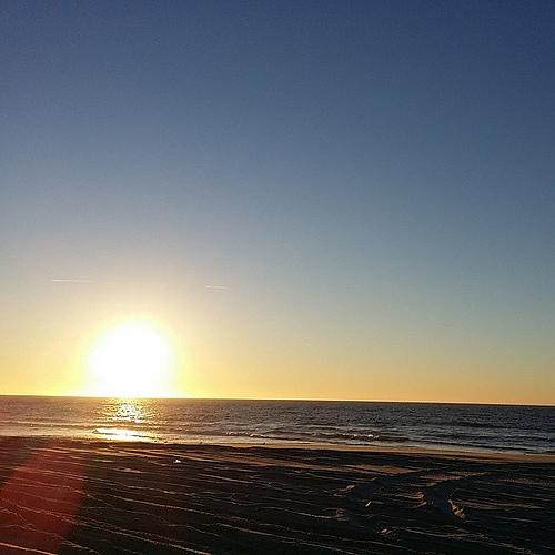 #smithpoint #allnighters #sunrise #beach #ocean #seagull #dogs