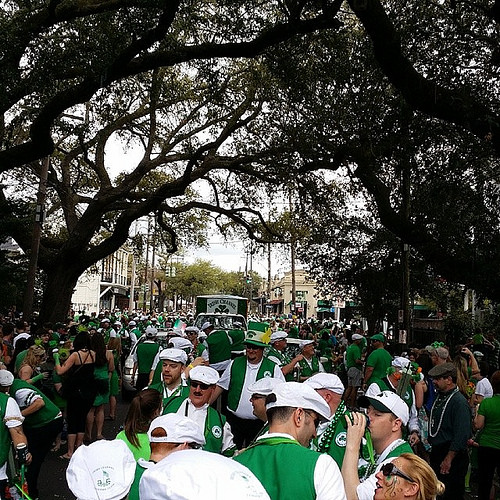 St Pattys Parade,  Nawlins style! !