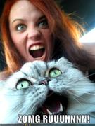 funny-pictures-zomg-run-cat-woman-screams