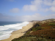 Miles of Untrampled Beach on Monterey Bay