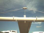 bridle2