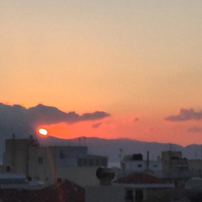 Gator Sunset