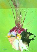 Sex-life-of-a-pod-2012-50-x70cm