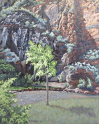 COTTON WOOD IN ZION 16 X20