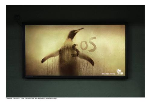第十六屆時報世界華文廣告獎「年度最佳平面廣告獎」-- 抗擊全球變暖:NDRC-水深火熱系列之企鵝篇