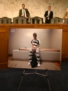 Photo at the hearing's gallery of a teenager in isolation.