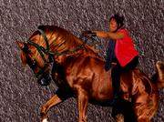 Breathe Life Fire ride em cowgirl