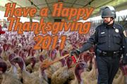 SMALL_Thanksgiving2011