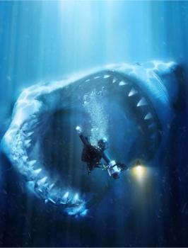 meg_shark_image