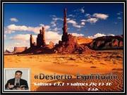 desierto 77