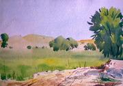 Landscape 16''x18'' water colour on paper