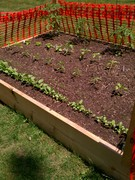 garden2012