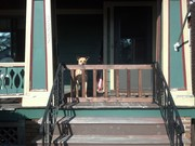 Simple gate to keep the dog on the porch
