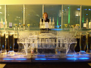 Belvedere Vodka Ice Bar