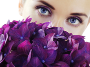 eyes over hydrangeas