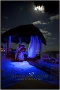 www.shannonconfairphotography.com