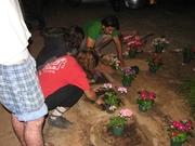 Jardineiros alternativos em Israel 2