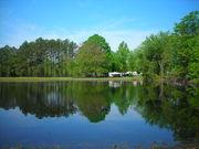 Bluegrass Near the Pond - 2010 - Mr. B's Bluegrass Festival 005