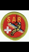 New SAR merit badge