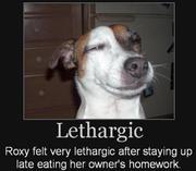 Lethargic - #6 Runnerup