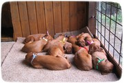 Our babies are asleep