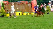 CAC Toruń 21.08.2011